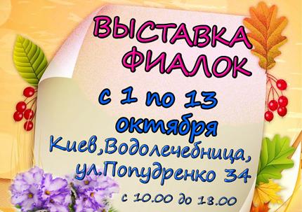 С 1 по 13 октября на территории дарницкой водолечебницы пройдет выставка фиалок