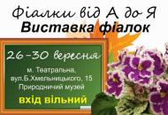 С 26 по 30 сентября в Археологическом музее пройдет выставка фиалок, посвященная Дню учителя