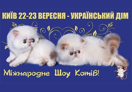 22-23 сентября в Украинском Доме пройдет выставка котов
