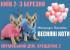 """2-3 марта в Украинском Доме пройдет Международная выставка кошек """"Весенние коты"""""""