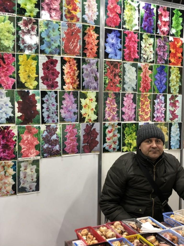 купить семена цветов на ярмарке