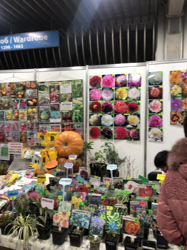 Семена цветов на выставке-ярмарке