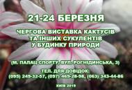 С 21 по 24 марта в Доме природы пройдет выставка кактусов и других экзотических растений