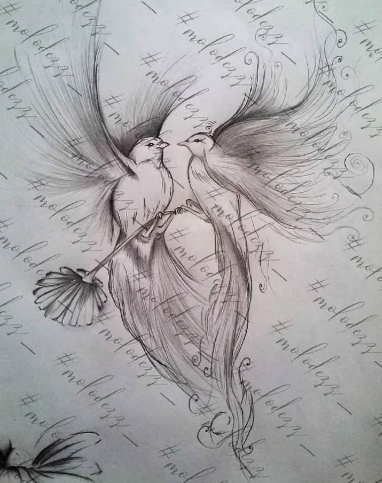 Екатерина Молодец - любовь у птиц