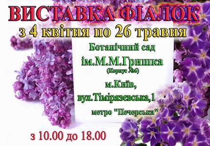 С 4 апреля по 26 мая в Национальным ботаническом саду им.Н.Н.Гришко (Корпус №6)  пройдет выставка фиалок