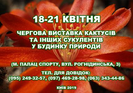 18-21 апреля в Доме природы пройдет выставка кактусов и других экзотических растений