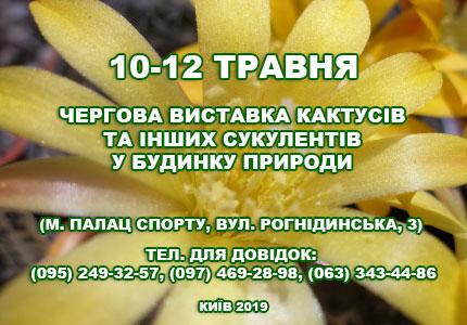 С 10 по 12 мая в Доме природы пройдет выставка кактусов и других суккулентов