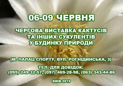 С 6 по 9 июня в Доме природы пройдет выставка кактусов и прочих суккулентов