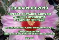 С 29 августа по 1 сентября в Доме природы пройдет выставка кактусов и других экзотических растений