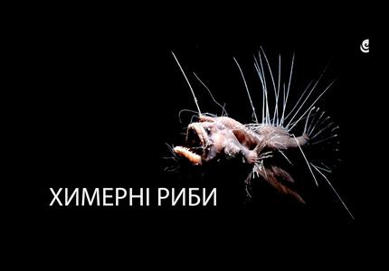 """10 августа в Научно-природном музее НАН Украины пройдет выставка """"Причудливые рыбы"""""""