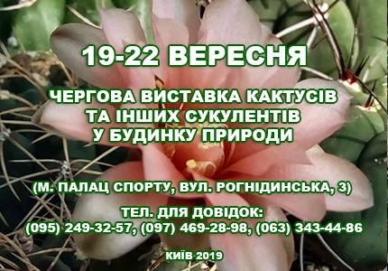 С 19 по 22 сентября в Доме природы пройдет выставка кактусов и других экзотических растений