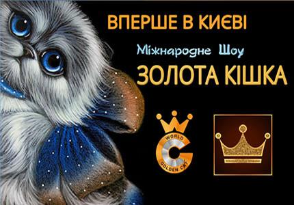 С 21 до 22 сентября в Украинском Доме пройдет выставка котов «Золотая кошка»
