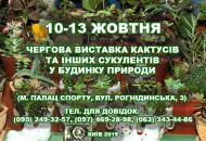 С 10 по 13 октября в Доме природы пройдет выставка кактусов