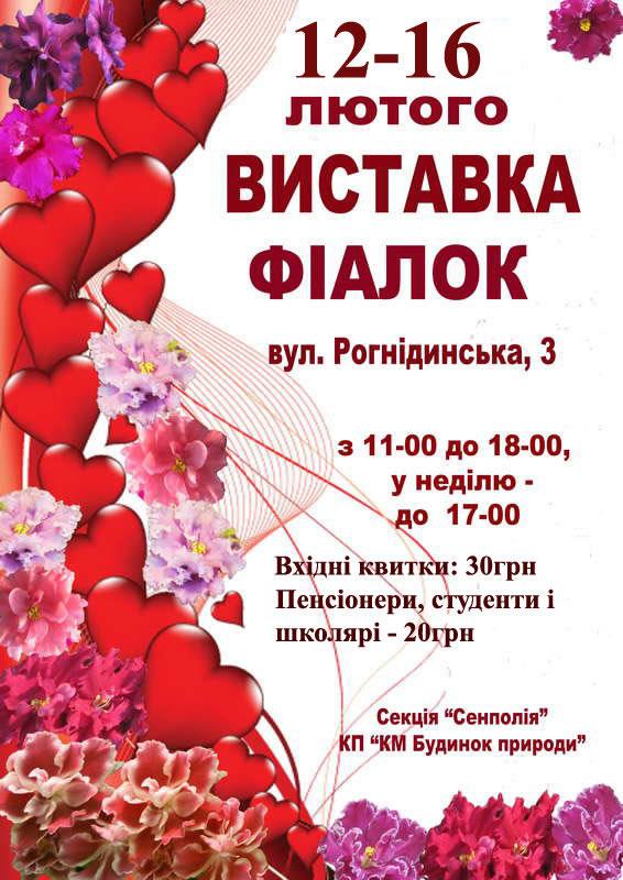 С 12 по 16 февраля в Доме природы пройдет выставка фиалок