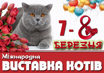 7-8 марта в парке Победы на Дарнице пройдет Международная выставка кошек