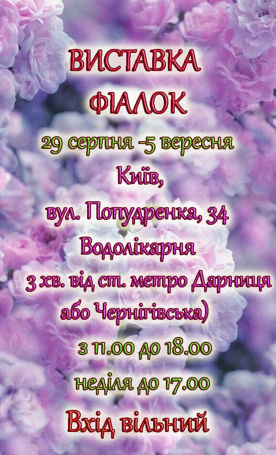 С 29 августа по 5 сентября на территории Дарницкой водолечебницы пройдет выставка фиалок