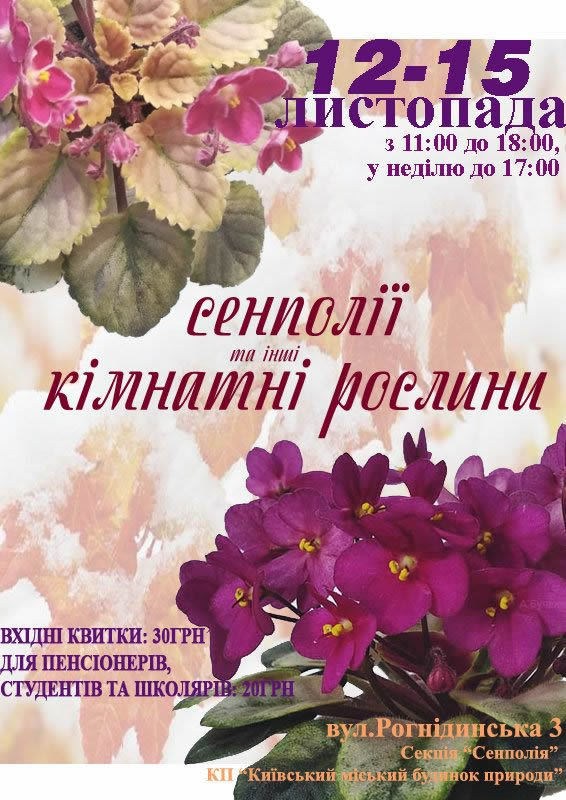 С 12 по 15 ноября в Доме природы пройдет выставка фиалок на Рогнединской