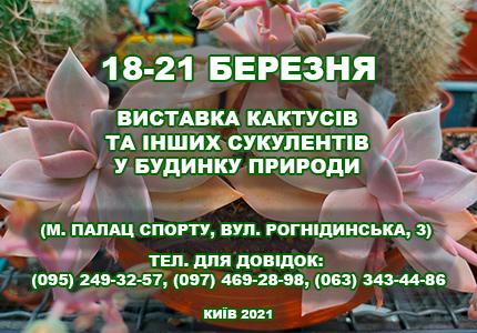 С 18 до 21 марта в Доме природы пройдет выставка кактусов и других экзотических растений
