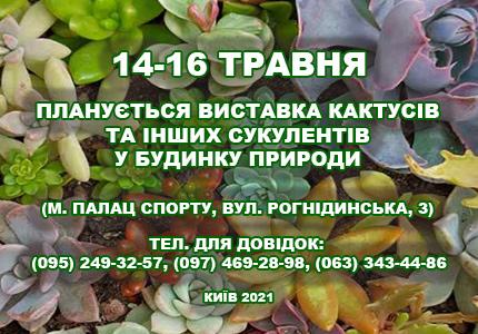 14-16 мая в Доме природы пройдет выставка кактусов выставка кактусов  и других экзотических растений
