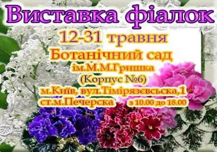 С 12 по 31 мая в Национальном ботаническом саду им. Гришко пройдет выставка фиалок