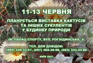 С 11 до 13 июня в Доме природы пройдет выставка кактусов и других экзотических растения
