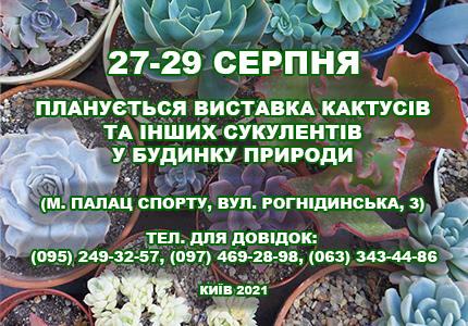 С 27 по 29 августа в Доме природы пройдет выставка кактусов и других суккулентов