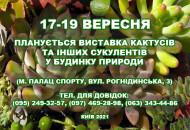 С 17 по 19 сентября в Доме природы пройдет выставка кактусов и других суккулентов