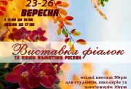 С 23 по 26 сентября в Доме природы пройдет выставка фиалок