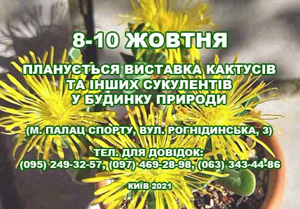 С 8 по 10 октября в Доме природы пройдет выставка кактусов и других суккулентов