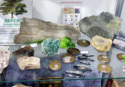 """В помещении галереи """"Мытець"""" открылась выставка самоцветов и окаменелостей"""